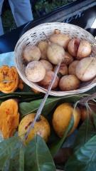 Fresh nutmeg and canistel